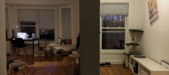 Sublet in Cambridge