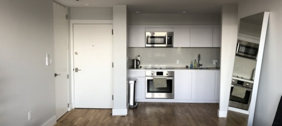 Harvard Sq - Spacious, renovated 1BR apartment
