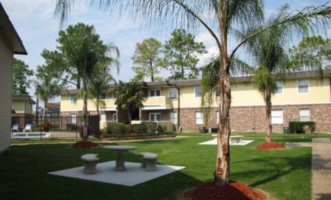Apartments Near LSU Tiger Plaza and Stadium Square Apartments- Where LSU Tigers Live and Play! for Louisiana State University Students in Baton Rouge, LA