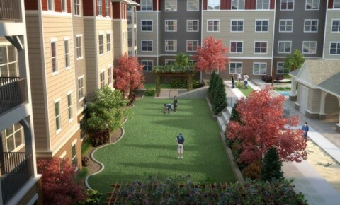 Apartments Near MSU Haven12 for Mississippi State University Students in Starkville, MS