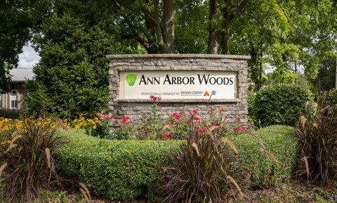 Apartments Near EMU Ann Arbor Woods for Eastern Michigan University Students in Ypsilanti, MI