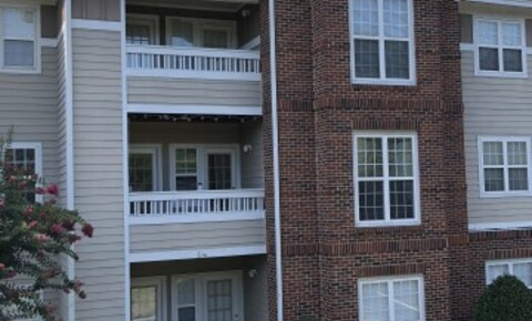 Apartments Near Queens Room Available for Serious Female Student for Queens University of Charlotte Students in Charlotte, NC