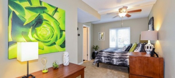 Sublet Tampa by USF ULake Apartments 1 Bedroom