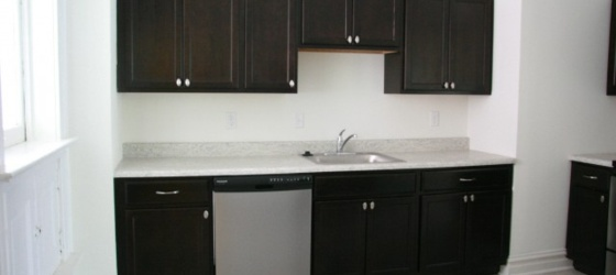 Newly updated apartment near Wash U