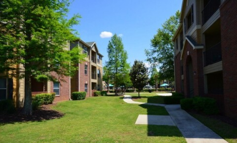 Apartments Near UofSC 21 Oaks for University of South Carolina Students in Columbia, SC