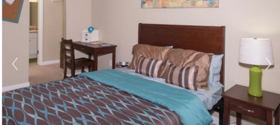 SUBLEASE FURNISHED 1/1 AT SEMINOLE FLATTS RIGHT NEXT TO FSU CAMPUS, CHIPOTLE, AND CHICK-FIL-A